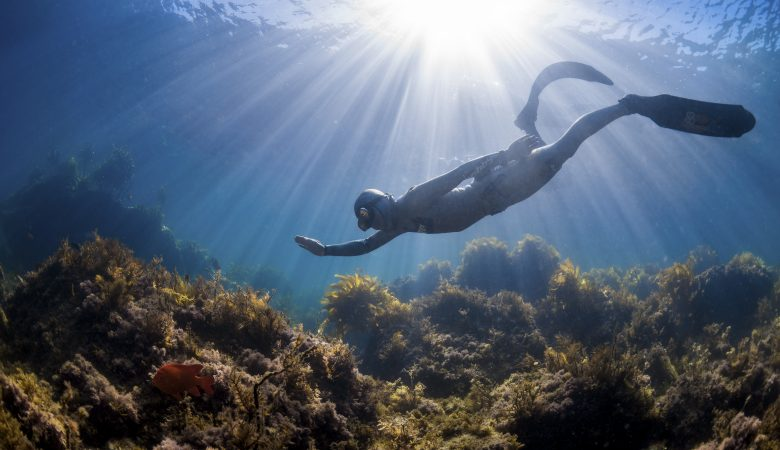 "Foto: Freediver Kurs ""Apnoe Level I"" mit Christian Redl"